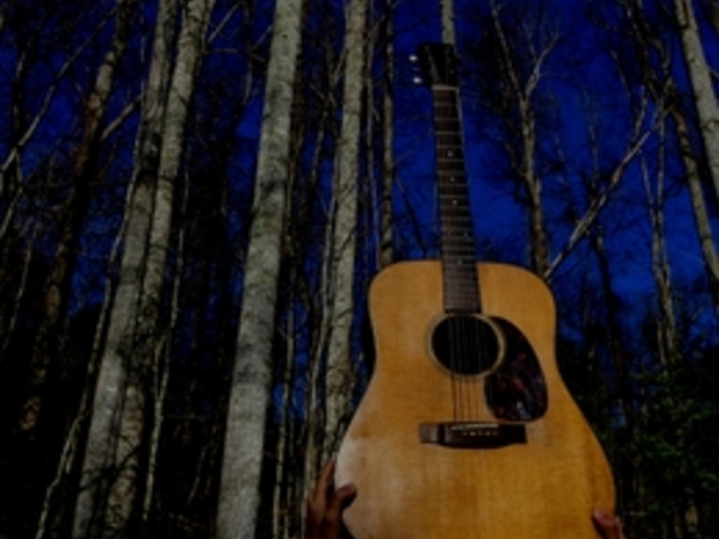 Over 100 Guitar songs to learn online   Tunefox com